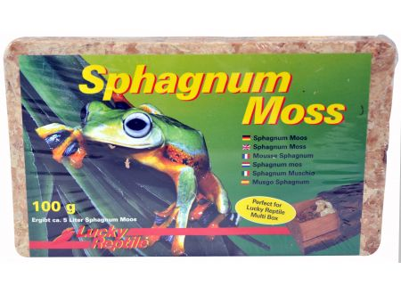 Sphagnum Moss Ziegel 100 g bei handwerker-versand.de günstig kaufen