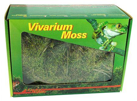 Vivarium Moos 150 g bei handwerker-versand.de günstig kaufen