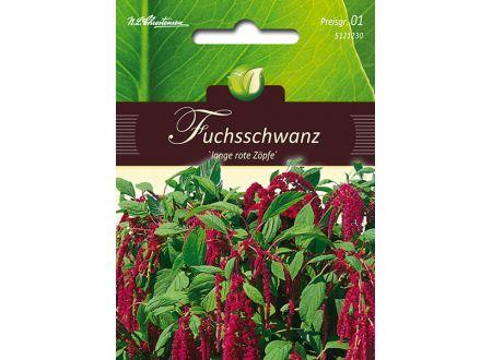 Amaranthus Fuchsschwanz rotblättrig