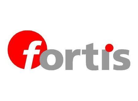 Fortis Schnellw.-Bithalter 1/4 Zoll bei handwerker-versand.de günstig kaufen