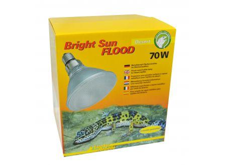 Bright Sun FLOOD Desert 70 W bei handwerker-versand.de günstig kaufen