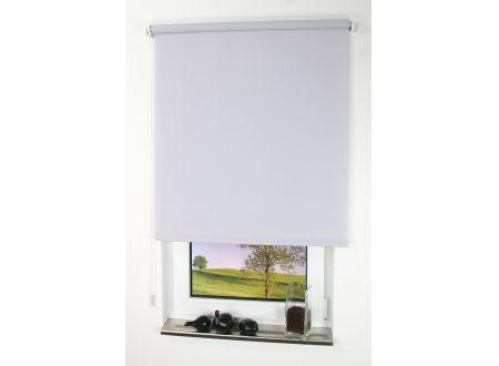 Liedeco Rollo mit Kette lichtdurchlässig Uni Seitenzugrollo für Fenster Farbe:Hellgrau Länge:180 cm Breite:82 cm