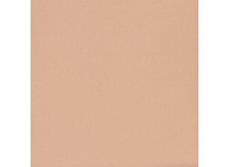 Liedeco Rollo mit Kette lichtdurchlässig Uni Seitenzugrollo für Fenster Farbe:sand Länge:180 cm Breite:202 cm
