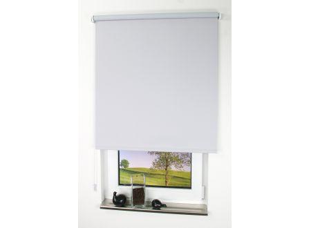 Liedeco Rollo mit Kette Verdunkelung uni Seitenzugrollo für Fenster und Farbe:Hellgrau Länge:180 cm Breite:82 cm