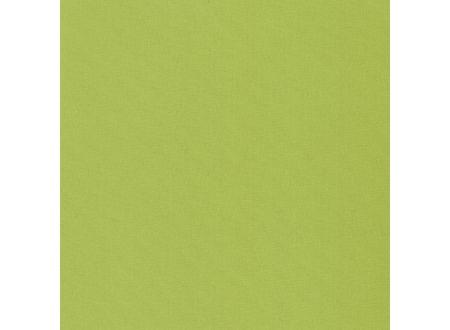Liedeco Klemmfix-Rollo verdunkelnd Farbe:apfelgrün Breite:60 cm