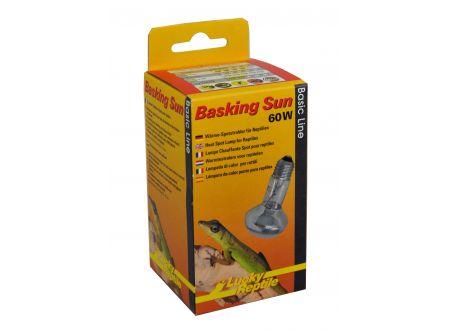 Basking Sun Leistung:60W