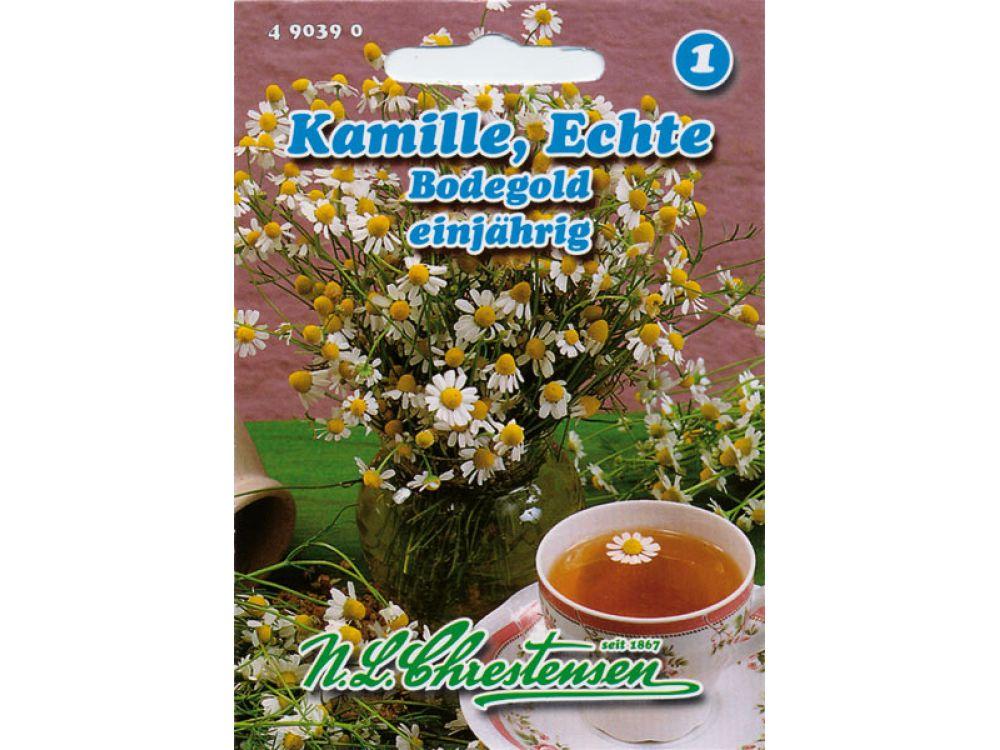 Kamille - Bodegold