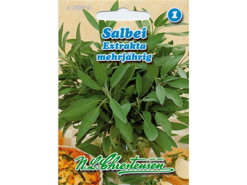 Salbei - Extrakta