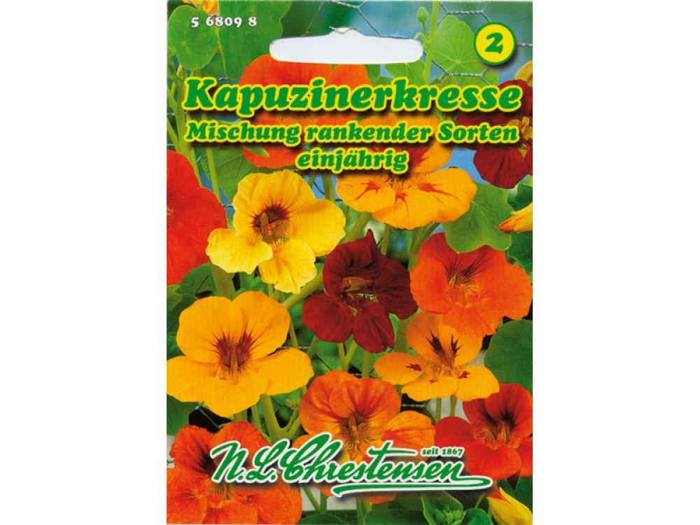 Tropaeolum majus - Kapuzinerkresse - Mischung rankender Sorten