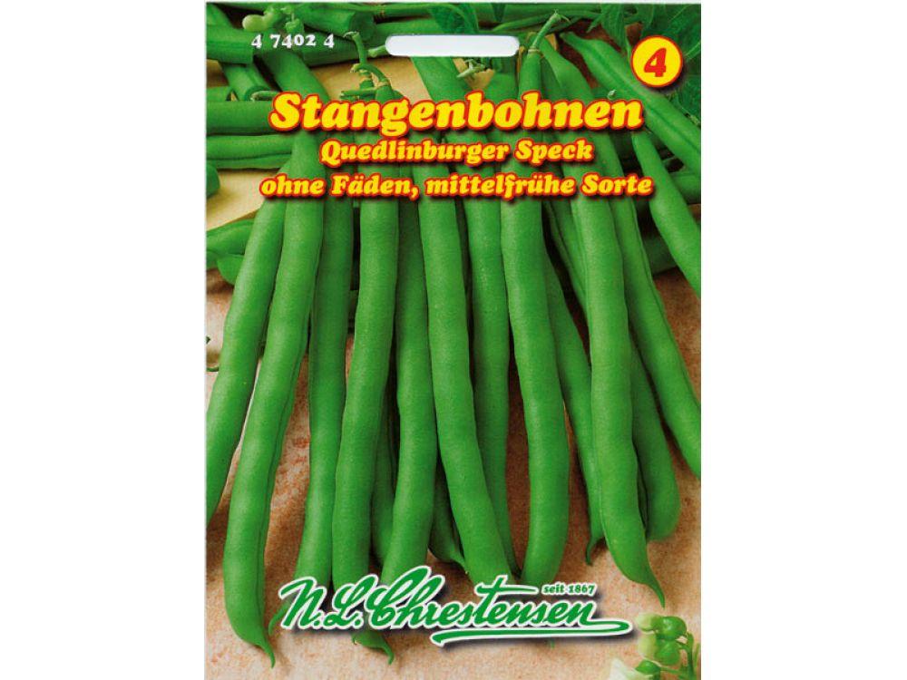 Stangenbohnen - Quedlinburger Speck