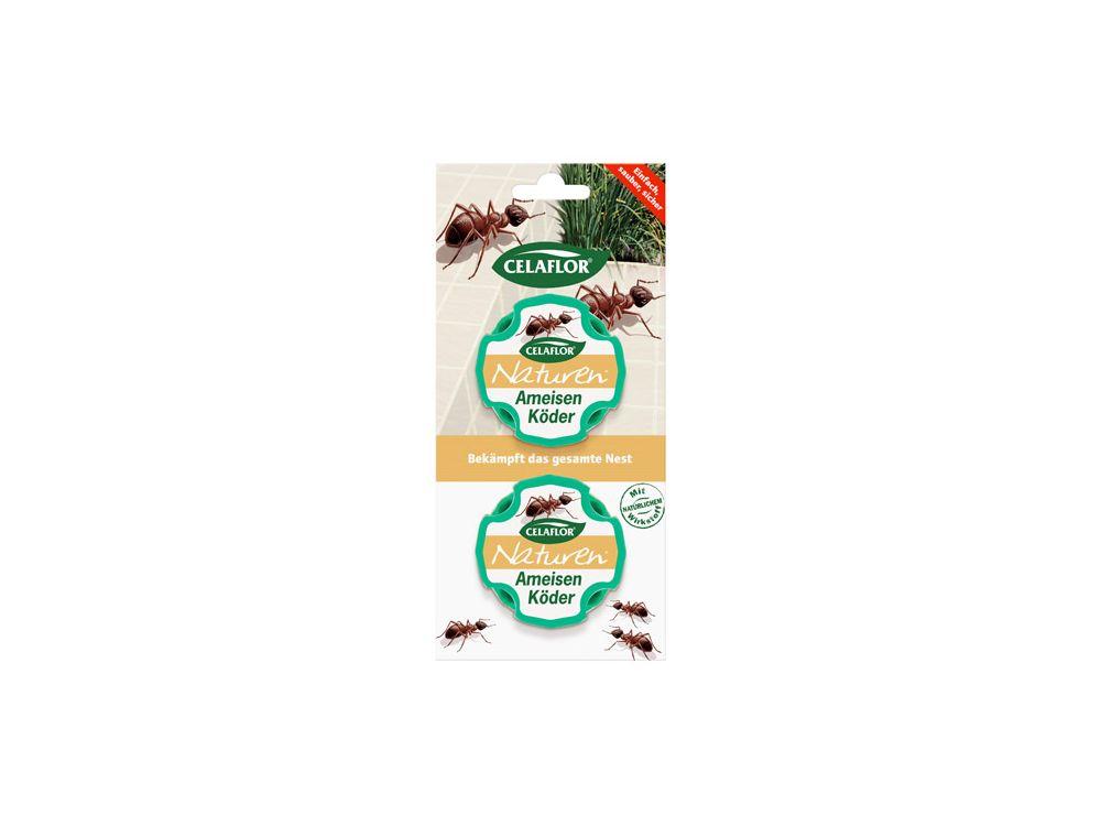 ameisen entfernen ameisen im haus bek mpfen haushalt putzen checkliste ameisen entfernen. Black Bedroom Furniture Sets. Home Design Ideas