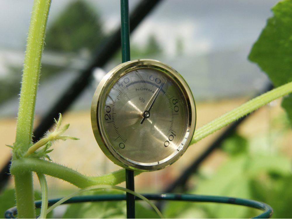 Hygrometer