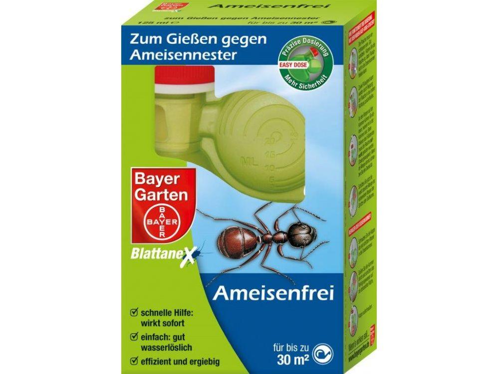 Bayer Bayer Ameisenfrei Zum Gie 223 En 125ml Kaufen